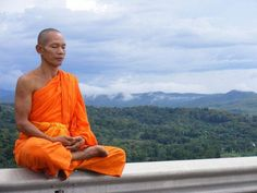 Sur Amazon, on trouve de tout : des jouets, des vêtements, des boissons et de la nourriture, depuis peu, et même désormais... des moines bouddhistes !http://news.radins.com/actualites/insolite-vous-pouvez-louer-un-moine-bouddhiste-sur-amazon,18055.html