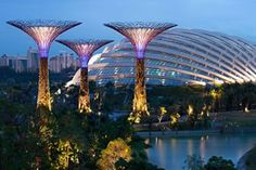 Singapore will soon open it's new Botanical Gardens housing plants, trees and flowers from all around the world, with conservatories and a spectacular skywalk.