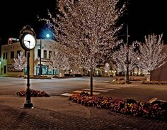 Fairhope, Alabama at Christmas!  The lights stay on the trees through Mardi Gras.  The town where I grew up!