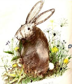 Image result for john burningham illustration