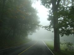 Heavy fog in the NC Mountains