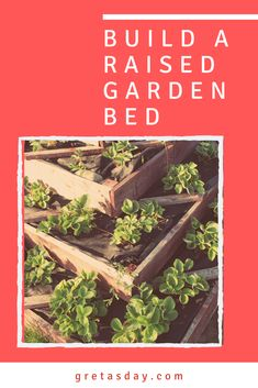 Everyone's been talking about growing their gardens lately. Perhaps a raised bed garden is the better option for you. Learn how to build and grow one. Building A Raised Garden, Raised Garden Beds, Raised Beds, Starting A Garden, Good To Know, Homestead, Eco Friendly, Life Hacks, Garden Ideas