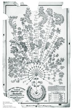 Daniel McCallum's 1854 organizational design for the New York and   Erie Railroad resembles a tree rather than a pyramid. It empowered frontline   managers by clarifying data flows. © March 2013 McKinsey Quarterly