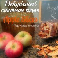 Easy, delicious, dried apple slices.