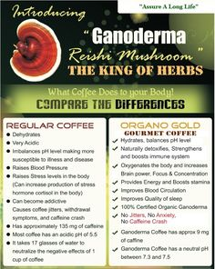 Difference between regular coffee and Organo Gold coffee infused with Ganoderma,