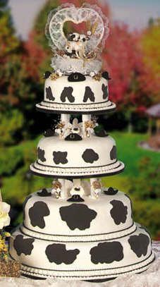 Cow Cake toppers, haha now wouldn't this be perfect