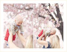 blossoms | Flickr - Photo Sharing!