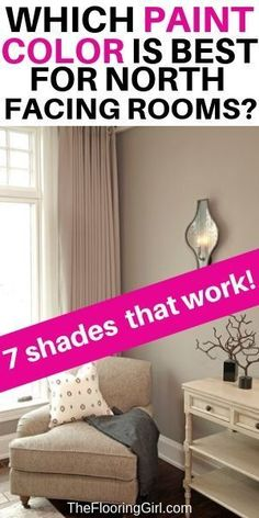 Which paint color works best for north facing rooms? Check out these 7 stylish paint shades that work well for north facing rooms. Neutral Paint Colors, Best Paint Colors, Room Paint Colors, Paint Colors For Home, Wall Colors, House Colors, Paint Paint, Grey Paint, Repose Gray
