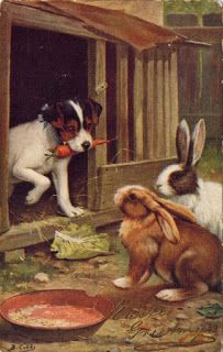 Vintage Easter postcard - A Jack Russell Terrier does not want to share a carrot with some bunny rabbits!