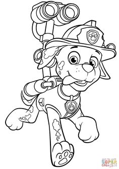 Horse Coloring Page of Show Pony Proudly Wearing Blue