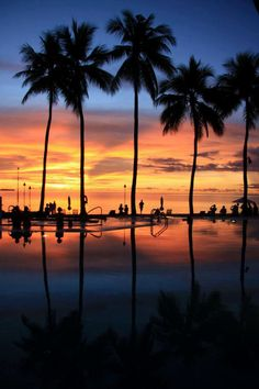 ✮ Sunset in Palau - an island country located in the western Pacific Ocean