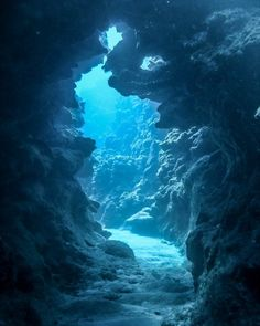 Beautiful World, Beautiful Places, Beautiful Pictures, Underwater Photography, Nature Photography, Underwater Photos, Underwater Caves, Underwater Wallpaper, Water Aesthetic