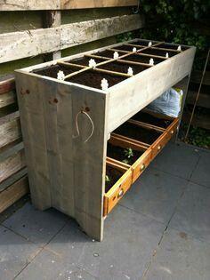 Tuindecoratie plantenrek tuinkast tuinberging zitbank woodex tuinieren pinterest ladder - Outdoor tuinieren ...
