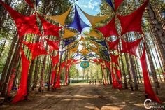 Electric Forest 2012 Day 1 - Calder Wilson Photography
