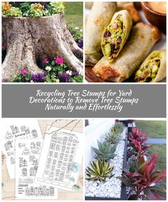 recycling tree-stump for planter and decorating with flowers. A great way to turn an eyesore into a centerpiece. gesundes baçken Recycling Tree Stumps for Yard Decorations to Remove Tree Stumps Naturally and Effortlessly