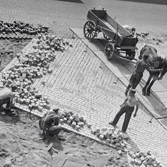 Brosteinlegging i Oslo sentrum, i 1935. Mye annet har forandre seg siden den gang, men brostein legges på akkurat samme måte i dag! Bortsett fra hesten og kjerra...  Foto: Oslo Museum  #bygartnerne #anleggsgartner #historie #kultur #oslo #oslobilder #oslove #osloby #oslomuseum #brostein #belegningsstein #byrom #utemiljø #hagersomvarerlenger