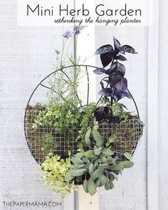 DIY-ify: Mini Herb Garden ... Rethinking the hanging planter | Tutorial via The Paper Mama on BHG Style Spotters