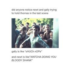 Newt and Gally trying to hold Thomas back :')