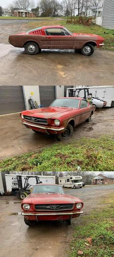 Project Cars For Sale, Ford Mustang Fastback, Wimbledon, Ali, Projects, Log Projects, Blue Prints, Ant