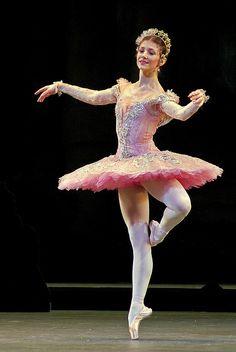 sleeping beauty ♥ www.thewonderfulworldofdance.com #ballet #dance