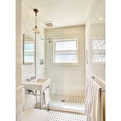 walk in shower (idea for adaptive/wheelchair access)