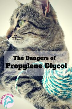 The Dangers of Propylene Glycol http://thelittersitter.com/blog/propylene-glycol-friend-foe-pets/#sthash.oYrHhQV2.dpbs