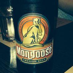 mongoose premium beer at tamatanga  #tamatanga on Tagboard Premium Beer, Mongoose, Fan, Photos, Pictures, Hand Fan, Fans