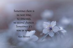 It's Now Or Never, Second Chances, Thoughts, Yup, Quotes, Quotations, Qoutes, Quote, Shut Up Quotes