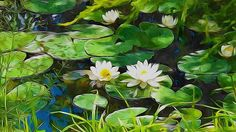New print available on fineartamerica.com! - 'White Water Lilies' by Lanjee Chee - http://fineartamerica.com/featured/white-water-lilies-lanjee-chee.html via @fineartamerica