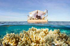 Una notte alla Grande barriera corallina.