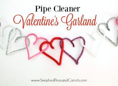 Pipe Cleaner Valenti