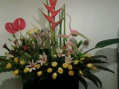 Diseño floreria carmel.com.mx