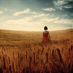 wheat...Michael Vincent Manalo