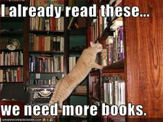 No, I've already read these nine hundred times... we need more books and another shelf... or six. lol.