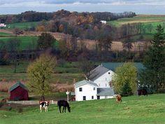 Amish farm in Ohio