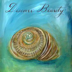 Dreamy Shells I - Discover Beauty Nautilus Print (scheduled via http://www.tailwindapp.com?utm_source=pinterest&utm_medium=twpin)