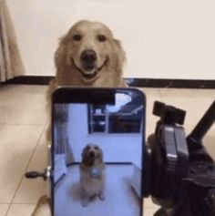 21 Best GIFs Of All Time Of The Week #119