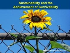 Sustainability and the Achievement of Survivability   Backdoor Survival