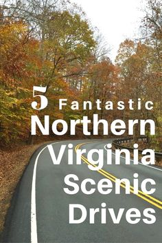 These 5 fantastic Northern Virginia scenic drives, with stops and activities along the way, are fun year-round, though especially inviting when fall foliage and crisp days return. USA