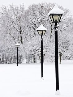... @ivannairem .. https://tr.pinterest.com/ivannairem/winter-snow-frozen/