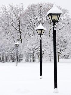 Winter Walks / 062