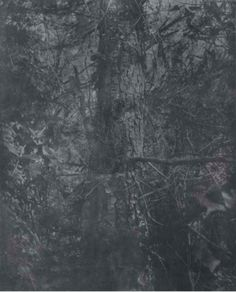 Gérard Traquandi (brother born in 1952), Black Forest, 1991, resino-pigmentype on paper mounted on canvas, 67.5 x 54.5 cm