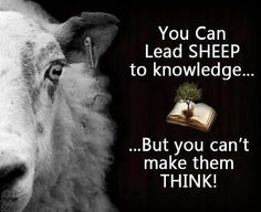 We Need the Sheep to Fight the Banksters - Dave Hodges - The Common Sense Show Prayer Partner, End Time Headlines, Knowledge And Wisdom, Think, Teaching History, We Need, Akita, Wake Up, Sheep