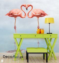 Zdjęcie: Flamingi