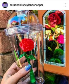 How Do I Get The Enchanted Rose Tumblers From Disneyland?