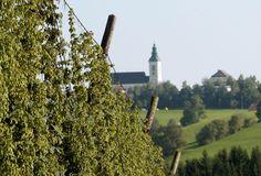 Bierkultur aus dem Mühlviertel Bavaria, Austria, Building, Travel, Beer, Culture, Voyage, Bayern, Buildings