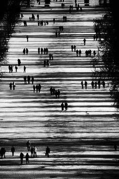 Untitled, Jardin des Tuileries, Paris by Eke Miedaner