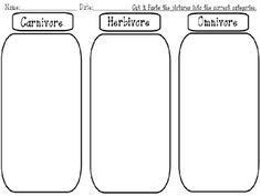 Carnivores, omnivores and herbivores animals to sort. Go to http ...