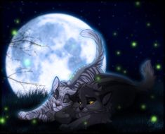 Warrior Cats Graystripe and Silverstream
