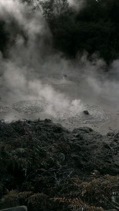 Thermal Activity...Boiling mud, Rotorua, North Island, New Zealand